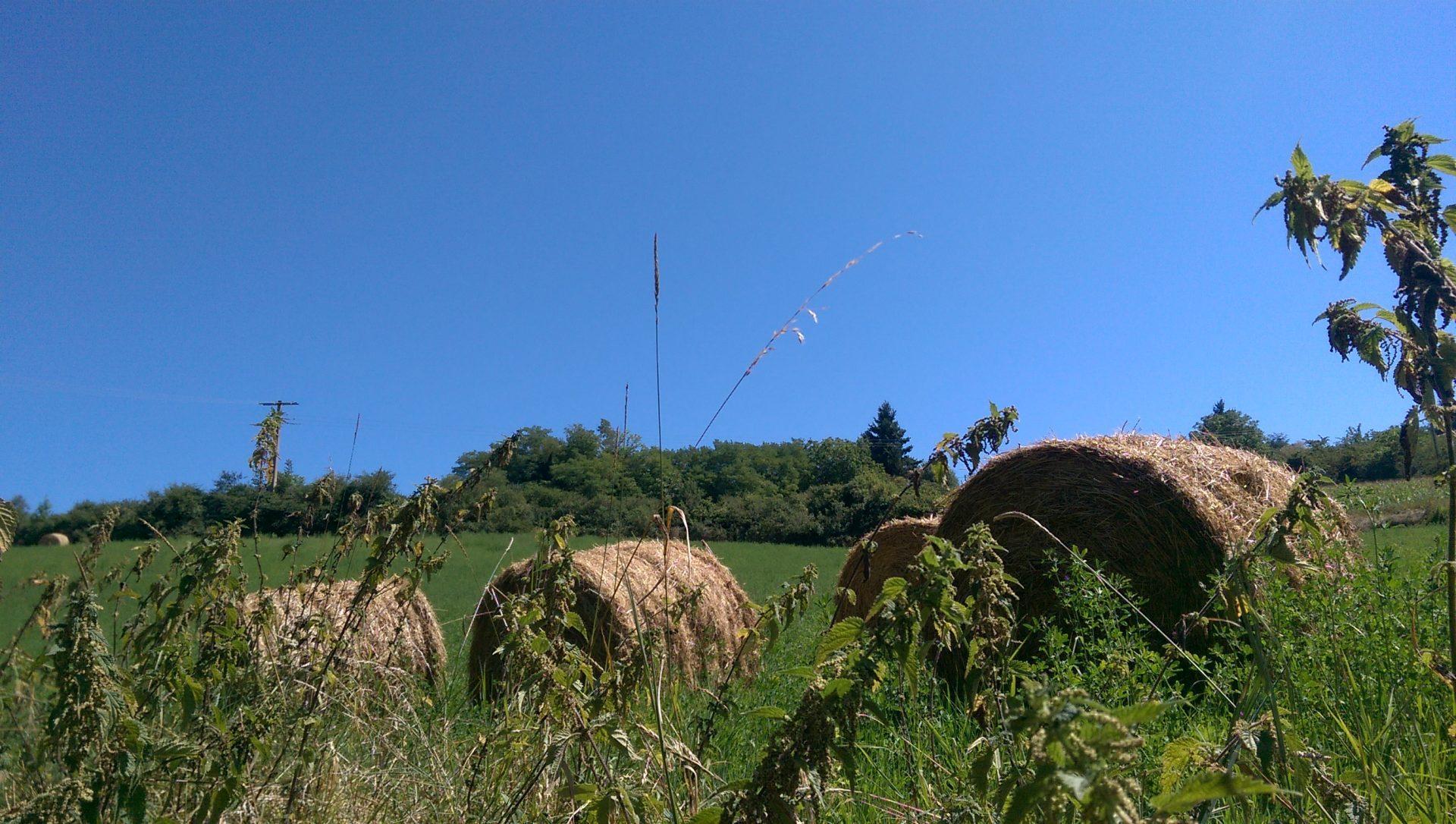 Mais le ciel est toujours plus bleu - Crédit photo izart.fr