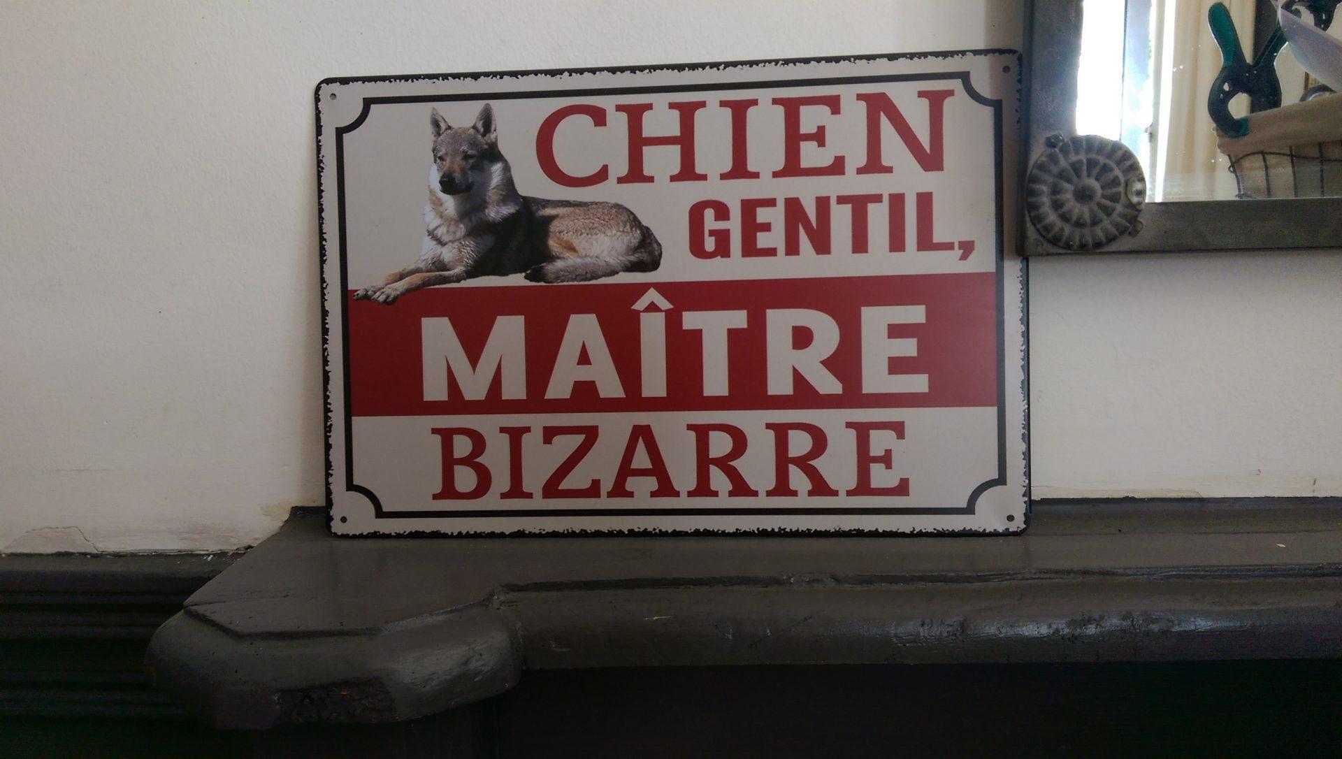J'allais même à l'Alhambra avec mon chien - Crédit photo izart.fr