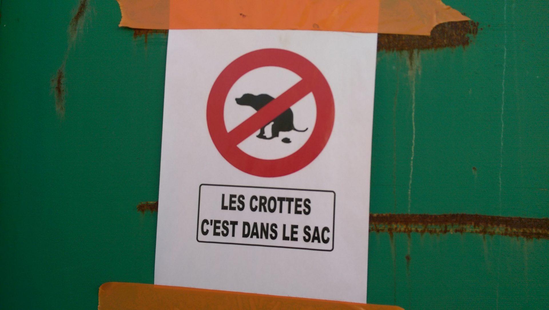 Les crottes de chien c'est organique - Crédit photo izart.fr
